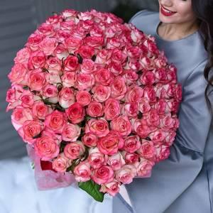 Букет 101 розовая роза с каймой и оформлением R1251