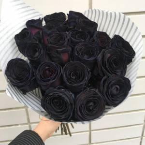 Букет 17 черных роз с оформлением R833