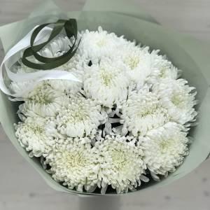 15 крупноголовых хризантем с упаковкой R579